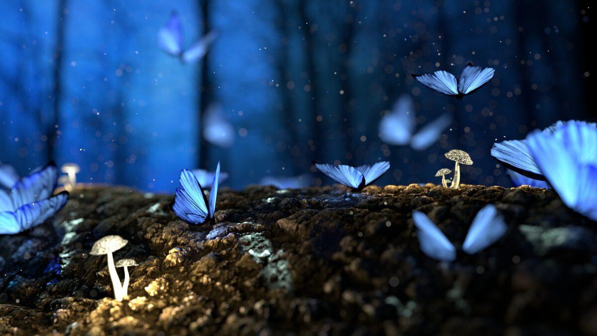 Šta znači sanjati leptira?