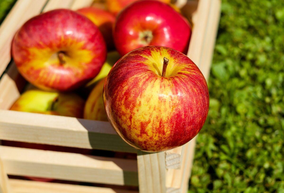 Šta znači sanjati jabuku?