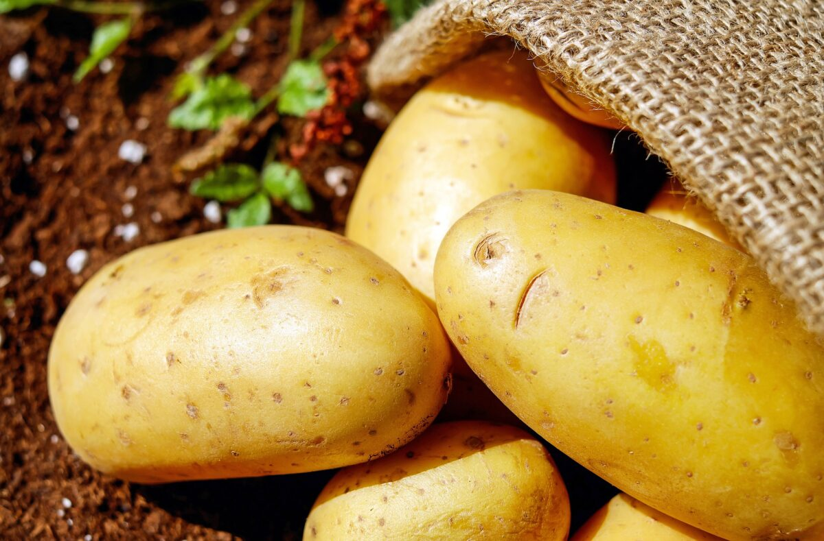 Šta znači sanjati krompir?