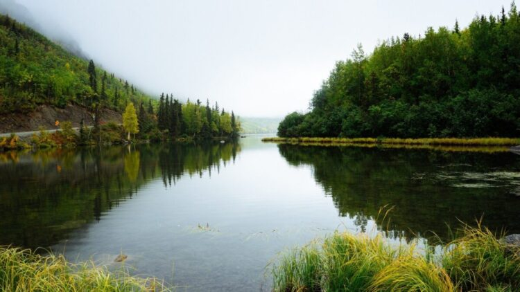 Šta znači sanjati reku?